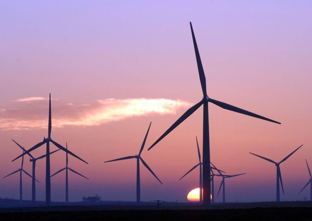 The Scottish Government has tried to encourage renewable energy sources such as wind power. Picture: Ian Rutherford