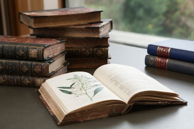 The Royal Botanic Garden Edinburgh has a collection of 70,000 books and more than 4,000 journals. Picture: Iga Gozdowska