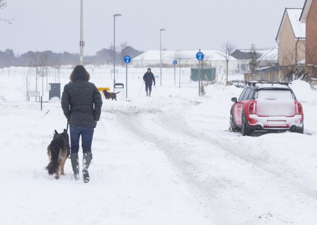 A dog walker braces the snow in Kirkliston, West Lothian. Picture: SWNS
