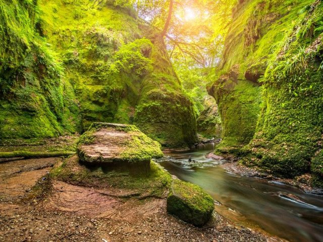 According to local legend Finnich Glen was once visited by the Devil. Fear not though today the steep-sided glen is merely the perfect destination for a spring walk.