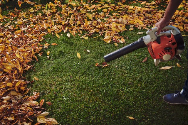 <p>The best cordless leaf blowers 2021</p>