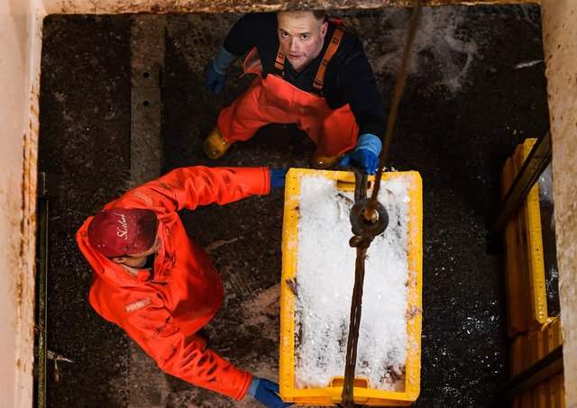 Crew members of the Radiant Star fishing in the North Sea. Picture: Jeff J Mitchell/Getty Images
