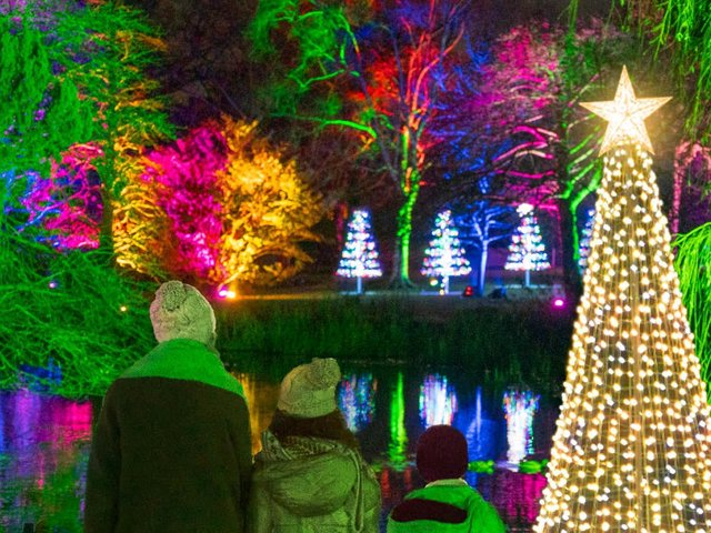 Christmas At The Botanics will dazzle with seasonal colours when it returns to Edinburgh on selected evenings from November 25, 2021.