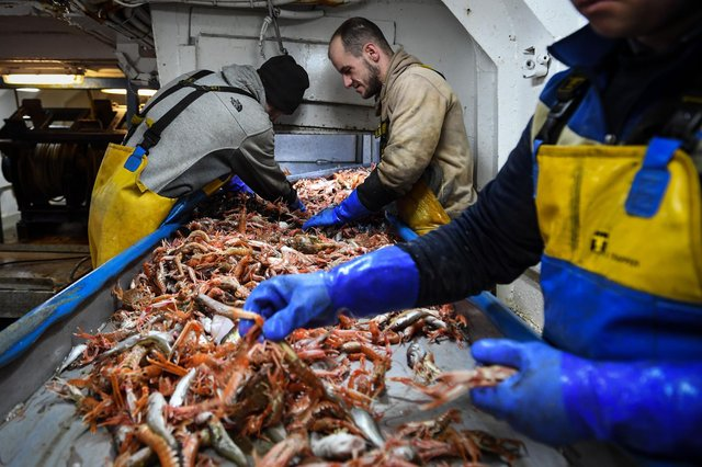 A fishing deal that gives increased quotas, full control of UK waters in five years, and access to EU markets is a betrayal of nothing, says Brian Wilson (Picture: Andy Buchanan/AFP via Getty Images)