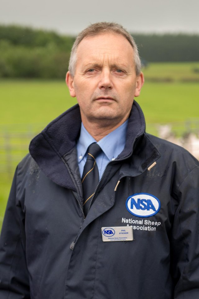 Phil Stocker, chief executive of the National Sheep Association