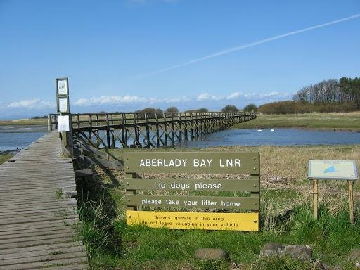 Dogs are already banned from Aberlady Nature Reserve