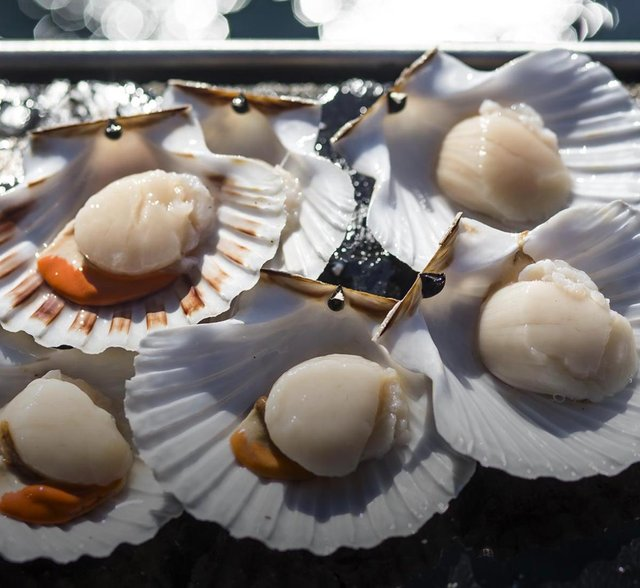 Products now available for delivery to Edinburgh and Glasgow include Ethical Shellfish Company's much-loved hand dived king scallops.