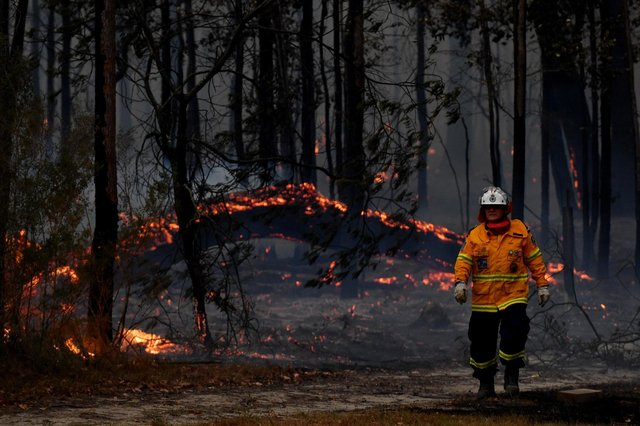 Firefighters battle a bushfire near the town of Sussex Inlet near Sydney, Australia, in December last year (Picture: Sam Mooy/Getty Images)