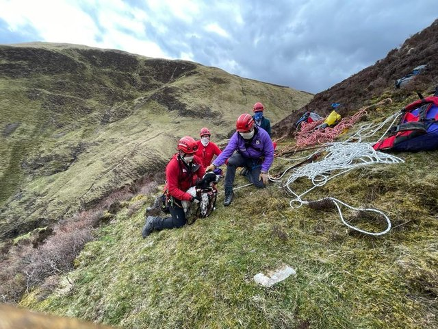 A Springer Spaniel puppy had to be saved by mountain rescuers after falling 300ft down a waterfall.