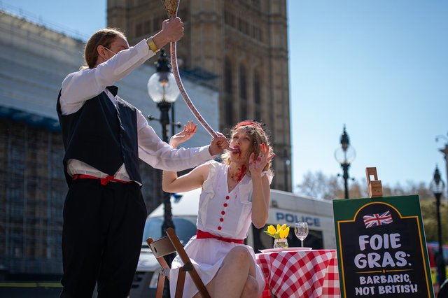 Activists from the campaign group Peta take park in an anti-foie gras protest outside the House of Commons last month (Picture: Aaron Chown/PA)