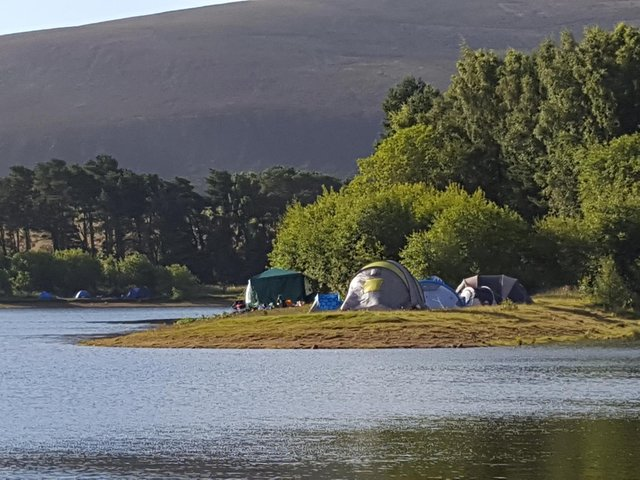 The park became a magnet for wild campers