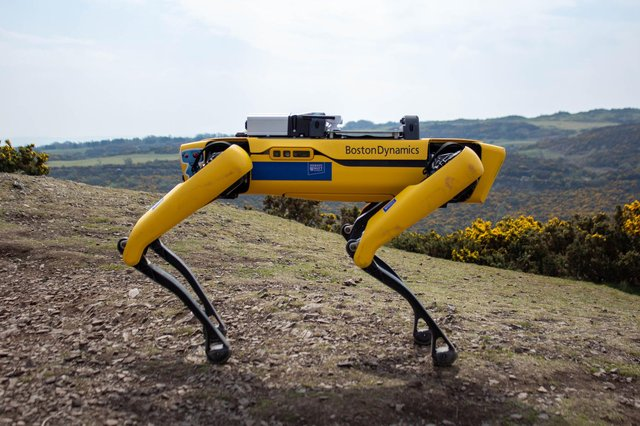 The robot, believed to be the first of its kind in Scotland, is part of Boston Dynamics' 'Spot' range. Picture: contributed.