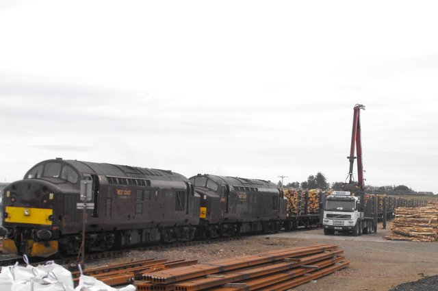 Timber being transported by rail