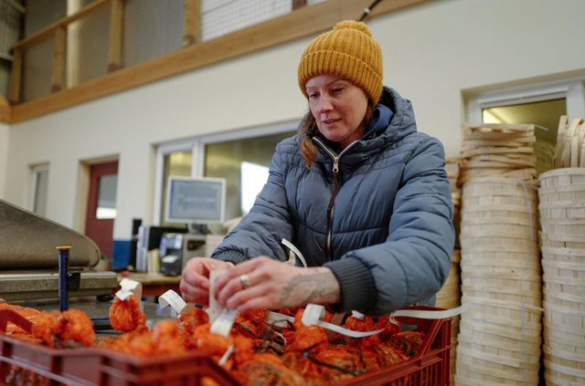 Brexit has meant more form filling for UK shellfish exporters (Picture: Getty)