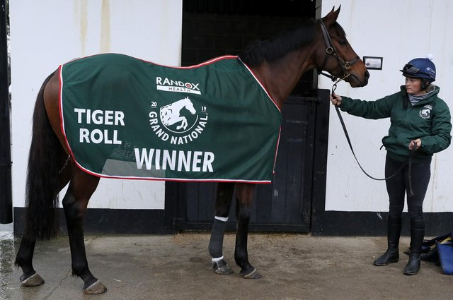 Two-time Grand National winner Tiger Roll has been withdrawn from this year's race. Picture: Brian Lawless/PA Wire