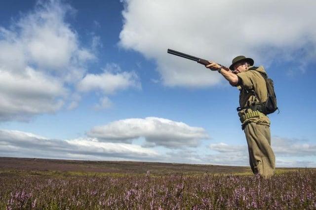 Grouse estates in Scotland face licensing regime