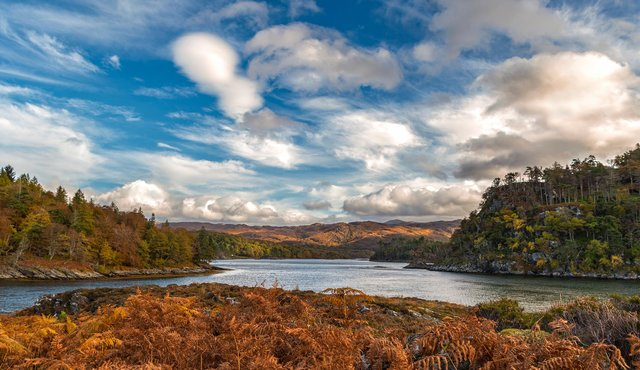 Deer Island on Loch Moidart in the west Highlands is now up for sale at starting bids of £80,000. PIC: Caroline Legg/CC