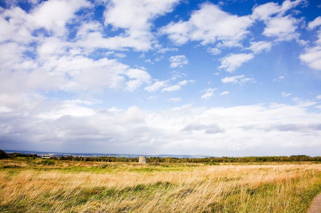A new map of Culloden Battlefield gives new insight into how the land lay on April 16, 1746 when Jacobites clashed with the British Army in the last act of the failed rising led by Bonnie Prince Charlie to restore his family line to the British throne. PIC: NTS.