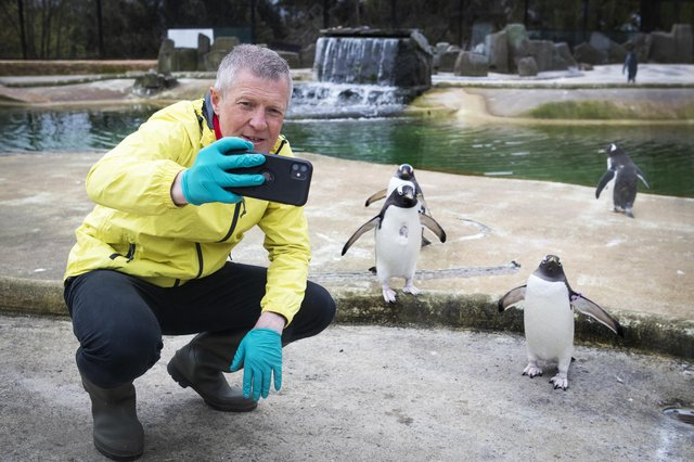 Scottish Liberal Democrat leader Willie Rennie takes a selfie with the Gentoo penguins during a visit to Edinburgh Zoo on the campaign trail (Picture: Jane Barlow/PA)