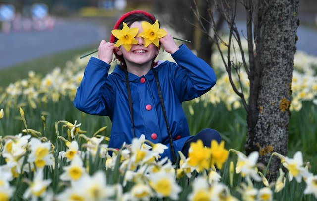 Spring has sprung and brought new hope