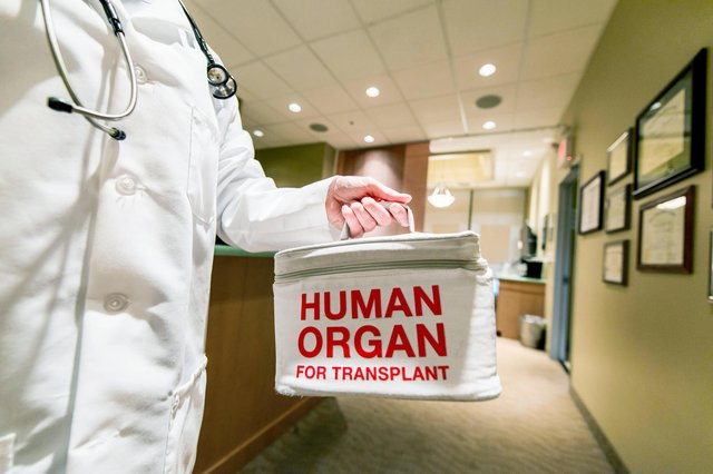 From March 26, a new organ donation law will introduce a system of deemed authorisation for organ and tissue donation for transplantation purposes, but people can still opt-out if they wish (Picture: Getty Images)