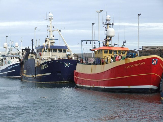 The taskforce was set up to help seafood businesses