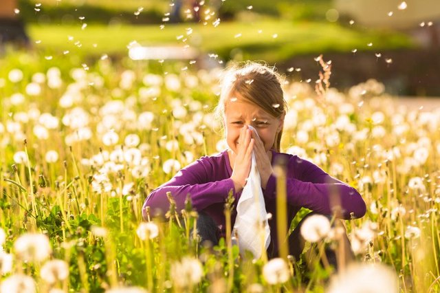 The coronavirus and hay fever do have some symptoms in common. Picture: Shutterstock