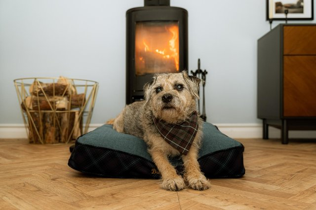Kiltmaker Kinloch Anderson has launched a new range of bespoke tartan and tweed pet accessories, created to be both practical and environmentally friendly