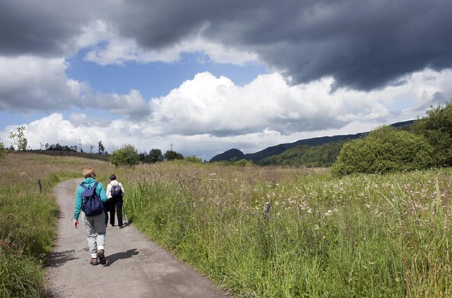 The sense of connection to local nature has increased during the pandemic, with people taking to the great outdoors for exercise