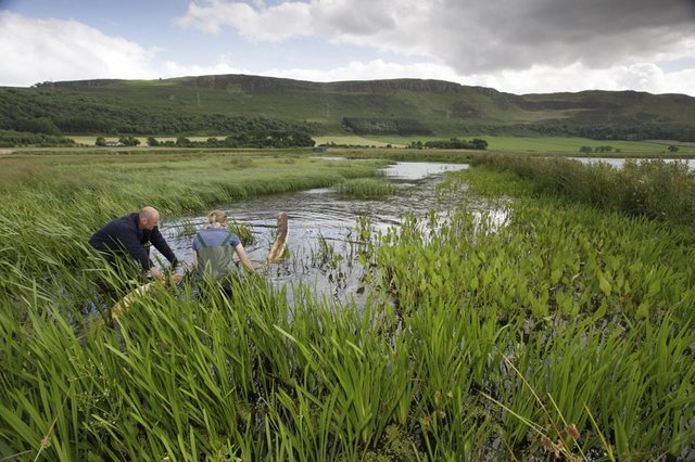 A new report suggests more than 130,000 new green jobs could be created across Scotland