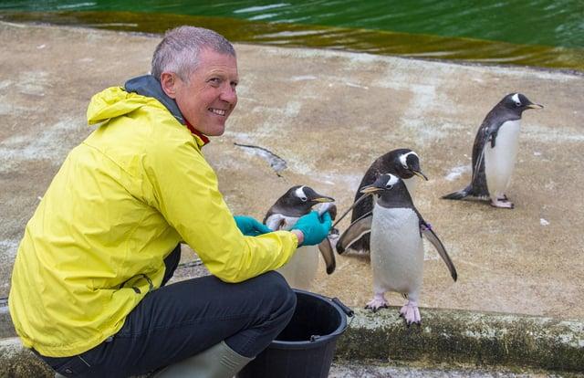 Willie Rennie meets some penguins at Edinburgh Zoo (Picture: Lisa Ferguson)