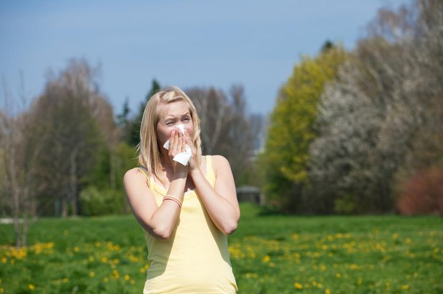 Grass pollen season typically lasts from mid-May until July (Photo: Shutterstock)