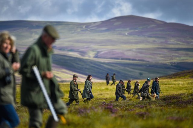 Campaigns from pressure groups outweigh the lived experiences of those who work the land in rural Scotland, says Dee Ward (Picture: Jeff J Mitchell/Getty Images)