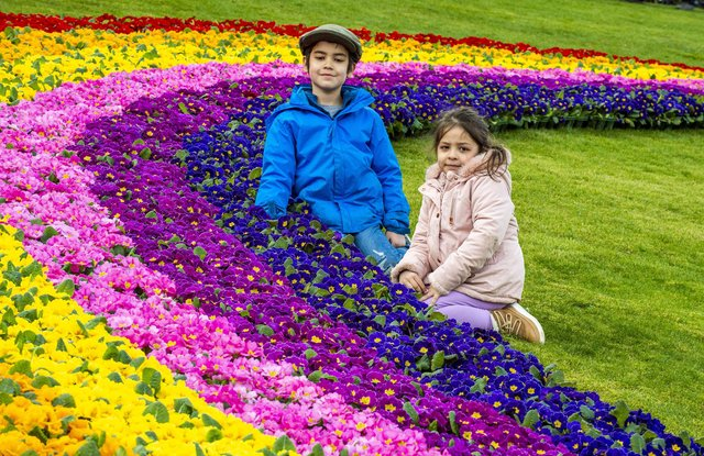 PIC LISA FERGUSON: Ivy Anderson, four, and six-year-old brother Basil marvel at the 'Rainbow of Hope'