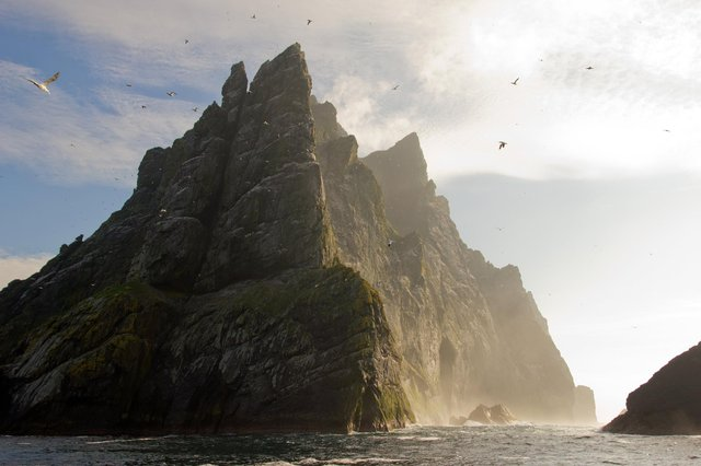 Northern gannets seen on top of the remote and steep cliffs of St Kilda. Picture: Getty Images/iStockphoto
