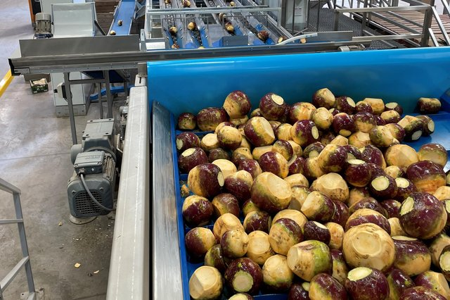 Stewarts of Tayside said its new vegetable handling machinery will see a 25 per cent increase in the tonnage of swedes it is able to wash and package.