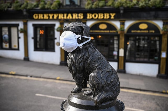 Greyfriars Bobby masked up during Covid to prevent the spread of the virus and protect his nose.