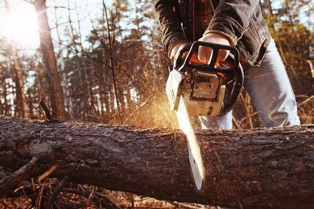 Chainsaws were originally used during childbirth (Shutterstock)