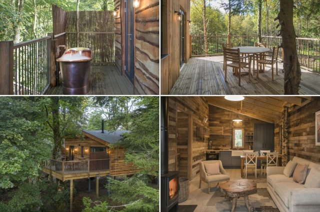 Take a trip to the treetops with these incredible eco-retreats in a Perthshire forest.