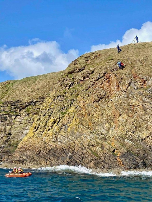 A dog has been rescued after falling from a cliff on Orkney. Photo:  Longhope RNLI