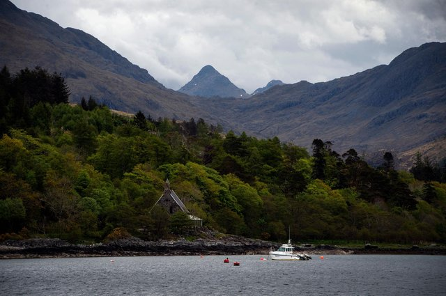 The Scottish Highlands may bring unexpected dividends to farmers