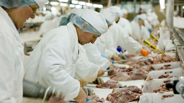 Meat processing workers are in demand