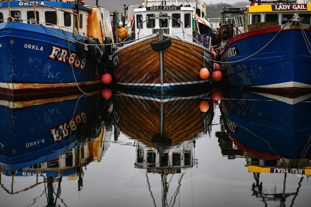 Boats tied up at Tarbert Harbour as much of the Scottish fleet is forced to stop fishing because of problems sending exports to the EU after Brexit (Picture: Jeff J Mitchell/Getty Images)