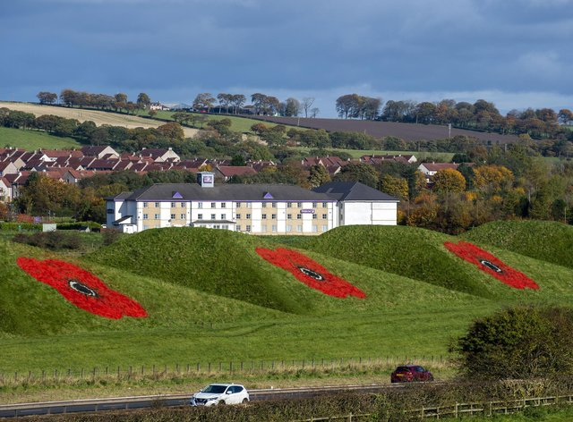 All three poppies at the site, Pyramid Business Park.