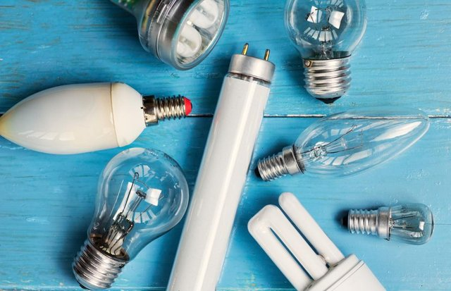 Sales of halogen and fluorescent light bulbs will be banned under the government's climate change plans (Photo: Shutterstock)