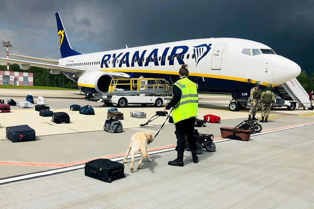A Belarusian dog handler checks luggages off a Ryanair Boeing 737-8AS (flight number FR4978) parked on Minsk International Airport's apron in Minsk