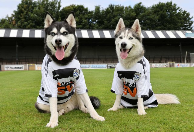 Kenny Dog-Leash and Paul Dogba pose with the new strips. Image: Robert Perry/PinPep