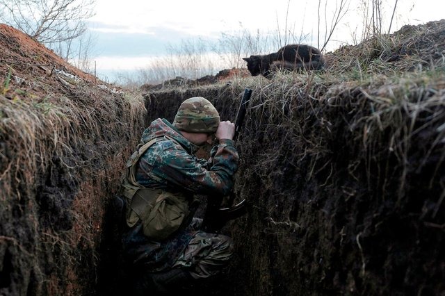 A cat looks down at a Ukrainian soldier sheltering in a trench on the frontline with Russia backed separatists near Krasnogorivka village, Donetsk region in February last year (Picture: Anatolii Stepanov/AFP via Getty Images)