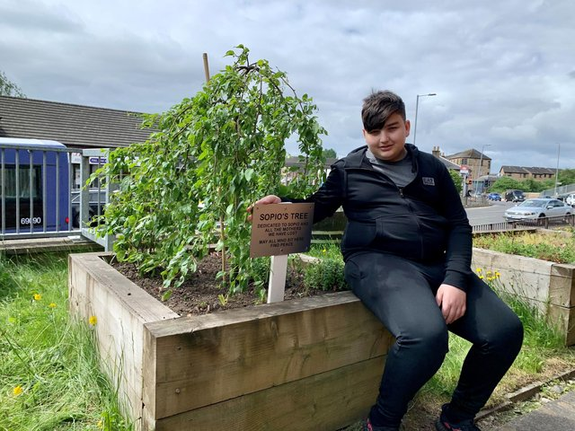 Giorgi Kakava, 13, with the memorial tree for his late mother, has been told he can remain in Scotland after a long battle with the Home Office. PIC: Church of Scotland.