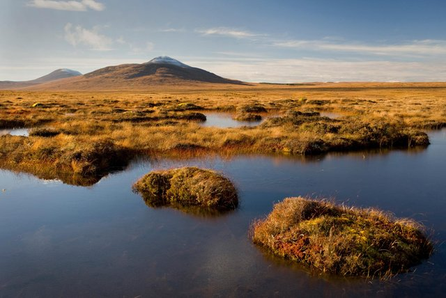 Restoration of Scotland's globally important peatlands is one of the measures laid out in a new 11-point nature recovery plan to help the country get back on its feet as coronavirus restrictions are eased